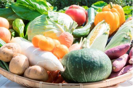 せいよ旬の野菜・果物詰合せセット