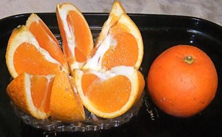 【数量限定】愛南産 ブラッドオレンジ(タロッコ)5kg