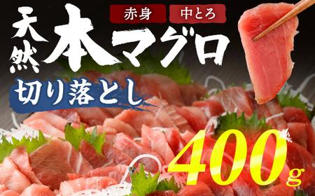 TK020高豊丸 天然本マグロ切落し600g<訳あり 鮪 まぐろ 刺身 丼 海鮮 事業者支援>