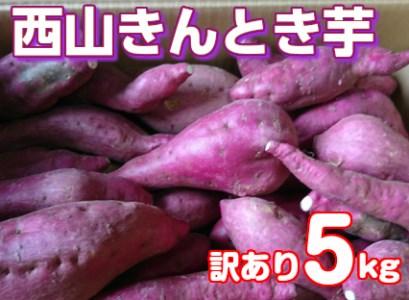 RK-55【訳あり】西山きんとき芋5kg_5,000円