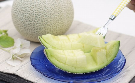 高知県南国市産/ご家庭用マスクメロン(2個)