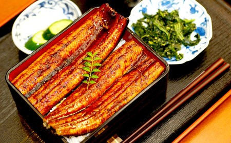 ME013 肉厚ふっくら美味しい 特大うなぎ蒲焼き(200g) 3尾セット