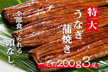 EA007 肉厚ふわっ『うなぎ蒲焼き無頭3尾』(国産ニンニクの芽付き)