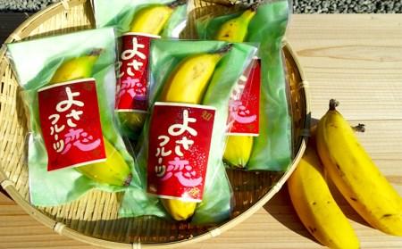 HNT002 高知初!! 純国産 有機栽培バナナ