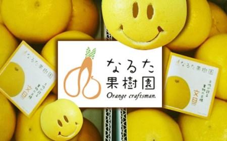 成田果樹園の文旦【家庭用】5kg