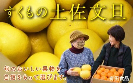 有田食品の土佐文旦10kg家庭用
