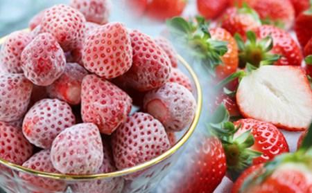 【2020年1月以降お届け分】フレッシュ冷凍イチゴ春摘み「あまえくぼ」500g×2袋