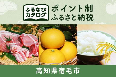【有効期限なし!後からゆっくり特産品を選べる】高知県宿毛市カタログポイント