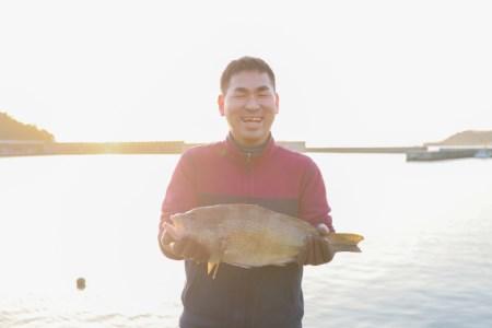 [001010]新鮮土佐魚の詰合せセットA