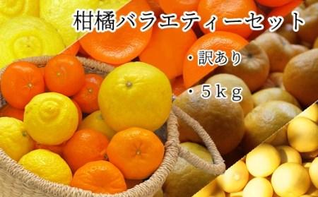 【L-43】訳あり柑橘バラエティーセット5kg