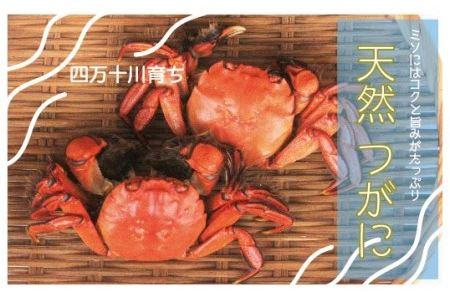 19-030.最高級天然食材!四万十川の天然つがに(4~6匹)