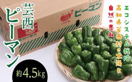エコシステム栽培 芸西ピーマン 約4.5kg(バラ詰)