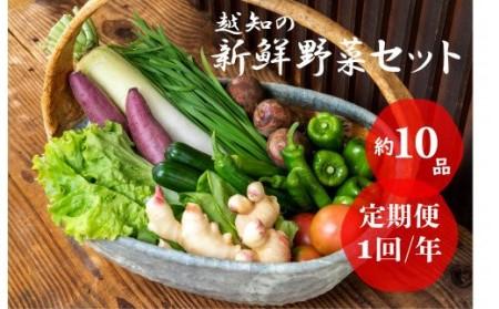 越知町産季節の野菜セット(年1回発送)