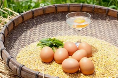 Ga-01 コロンブスの茶卵「卵かけご飯セット」【お届け日指定不可】