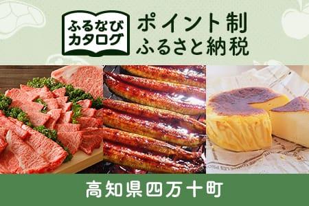 【有効期限なし!後からゆっくり特産品を選べる】高知県四万十町カタログポイント