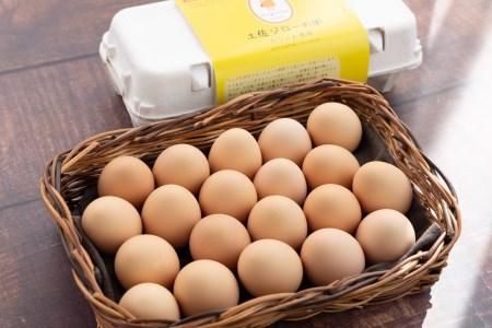 【6カ月連続お届け】放し飼い土佐ジローの卵 20個入り[1325]