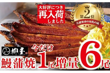 C534 柳屋の鰻蒲焼 5尾 数量限定1尾増量