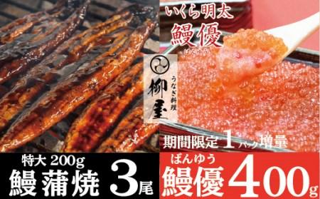 C538 柳屋の鰻蒲焼 超特大3尾と明太イクラ「鰻優」200g+200g【期間限定】