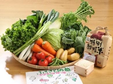 米&野菜セット