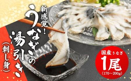【A0-051】新感覚!うなぎの刺身