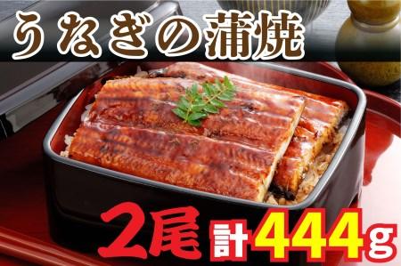 AU-015 【当店オリジナル味付け】鹿児島県産・鰻の蒲焼2尾~高級グルメ定番~