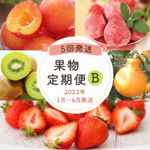 【定期便(5回発送)】果物定期便B(キウイ・デコポン・あまおう・冷凍あまおう・すもも)