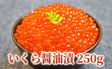 [№4630-0489]日高産いくら醤油漬250g