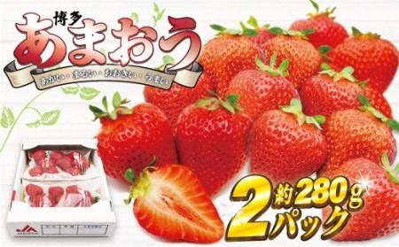 博多あまおう2パック【2022年1月より順次】約560g[C2242]