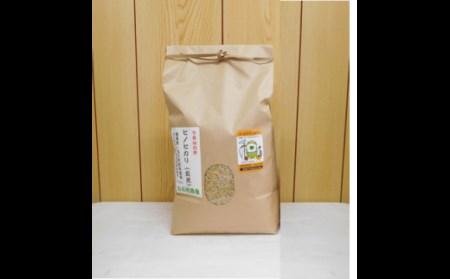 C449 白石(米)農園 ひのひかり 玄米3kg