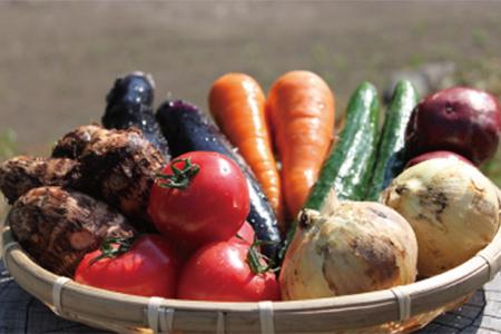 C365 UIC名水うきはの無農薬減農薬お野菜セットS