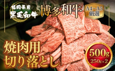TY009福岡県産 黒毛和牛 博多和牛 焼肉用切り落とし500g