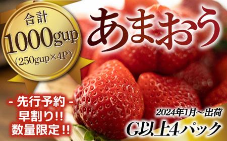 TY033「先行予約」福岡県産 あまおう 1000g(250g×4パック)2022年2月~4月にかけて順次発送予定