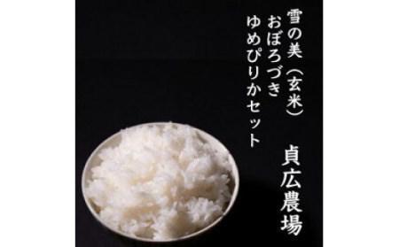 【令和2年産】「雪の美」おぼろづき・ゆめぴりかセット 玄米10kg(各5kg)