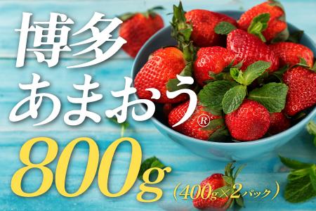 A520.【予約受付】★限定品★あまおう(400g×2パック)/2021年12月~2022年4月発送