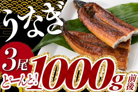 『丑の日までにお届け!!』うなぎの蒲焼4尾(計800g以上)