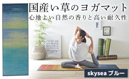 AA065 畳ヨガECO skysea (66×185)(ブルー)
