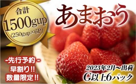 AZ015 福岡県産 いちご あまおう 1500g (250g×6パック) 2022年2月より順次発送予定