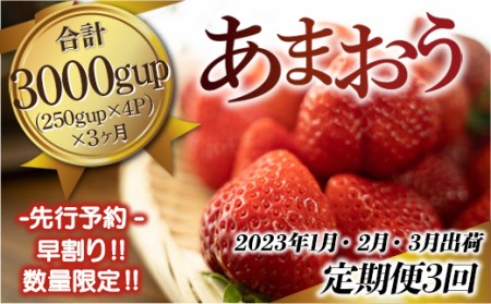 AZ021 福岡県産 あまおう定期便 3ヵ月 250g×4 合計3kg Gサイズ