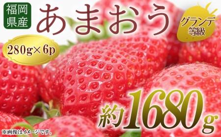 2TB6 【福岡県産あまおう】 グランデ等級 280g×6P(2月上旬~4月下旬発送)