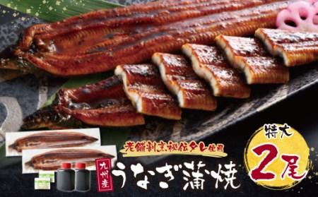 G02-12 割烹たちばな 極みうなぎ蒲焼(九州産)2尾