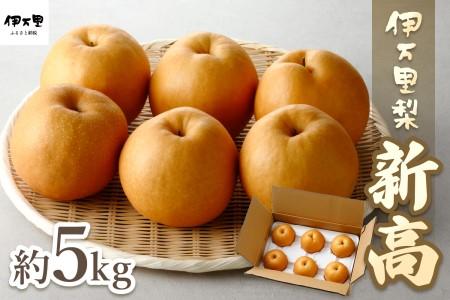 B162【令和3年産先行予約】伊万里梨「新高」(5kg)大型種