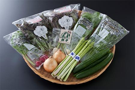B0-59 【野菜ソムリエセレクト】旬の野菜果物セット5~6人用