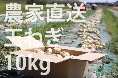 A5-056 農家直送!佐賀県産玉ねぎ(10kg)M~2Lサイズ 5千円コース