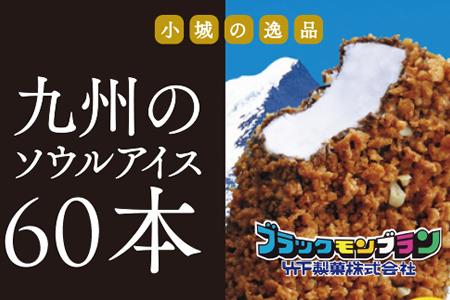 B-37 竹下製菓アイスお徳用バラエティ8箱セット
