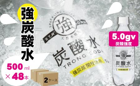 B10-088 【強】炭酸水ストロングウォーター(500ml)24本×2ケース 1万円コース