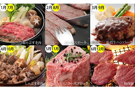 G250-050 【定期便】 (12ヶ月連続お届け) 佐賀牛(毎月)12回お肉の定期便 25万円コース