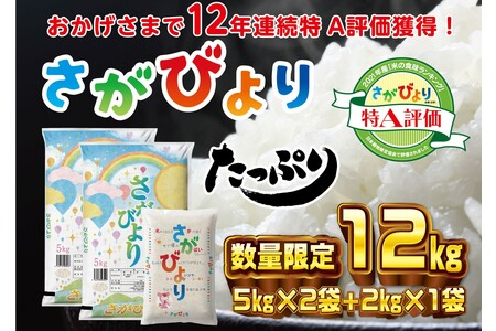 10年連続最高評価特A受賞米!令和2年産さがびより10kg (H015107)