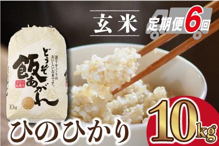 【令和2年産 先行予約】ひのひかり 玄米 10kg 定期便6ヶ月間コース (H061110)