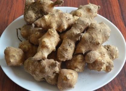 天然泥付き菊芋 3kg