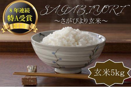 9A588 【H30年収穫米】佐賀県産『さがびより(玄米5kg)』